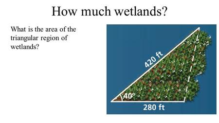 How much wetlands? What is the area of the triangular region of wetlands?