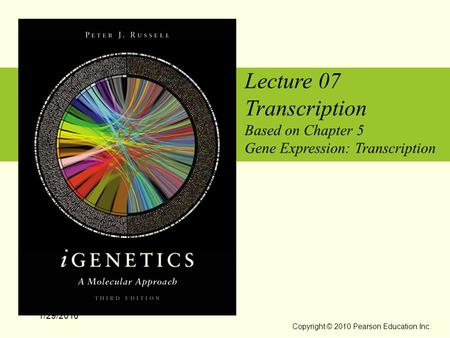 Lecture 07 Transcription Based on Chapter 5 Gene Expression: Transcription 1/29/2016 Copyright © 2010 Pearson Education Inc.