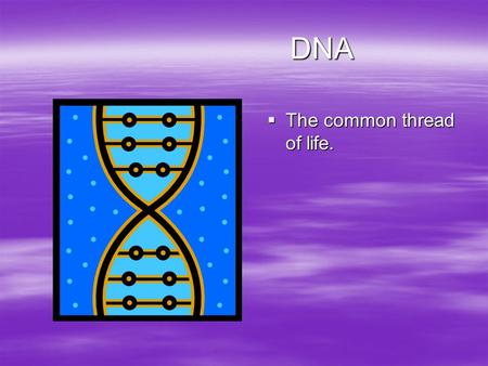 DNA DNA  The common thread of life.. What are the functions of DNA?  There are two main functions of DNA –It is the molecule of heredity. –It contains.