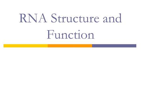 RNA Structure and Function. Another Nucleic Acid?? Meet RNA  Monomer: Polymer:  What are some differences between DNA and RNA?