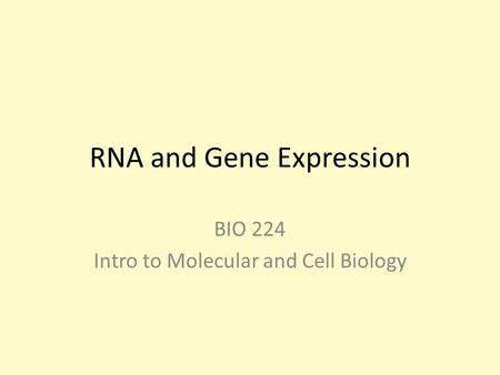 RNA and Gene Expression BIO 224 Intro to Molecular and Cell Biology.