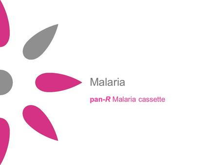 Malaria pan-R Malaria cassette. Agenda Disease overview Infectious agents Diagnosis pan-R Malaria cassette: specifications Conclusion.