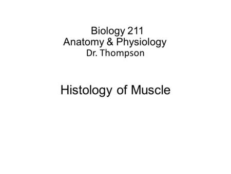 Biology 211 Anatomy & Physiology I Dr. Thompson Histology of Muscle.
