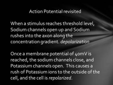 Action Potential revisited When a stimulus reaches threshold level, Sodium channels open up and Sodium rushes into the axon along the concentration gradient.