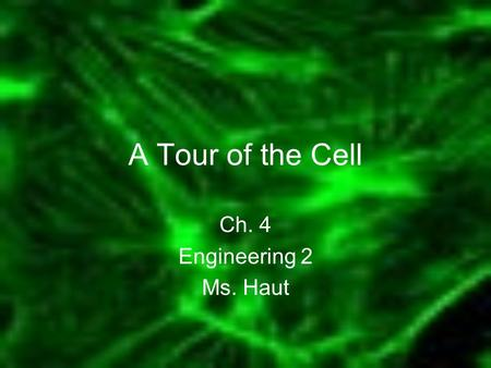 A Tour of the Cell Ch. 4 Engineering 2 Ms. Haut. INTRODUCTION TO THE WORLD OF THE CELL The microscope was invented in the 17th century Using a microscope,