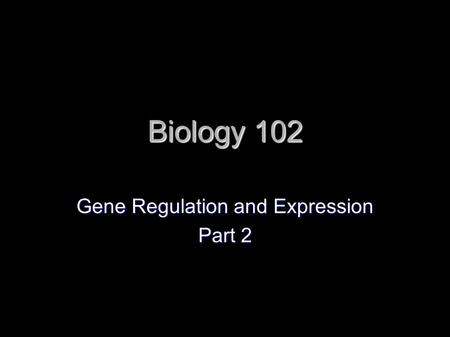 Biology 102 Gene Regulation and Expression Part 2.