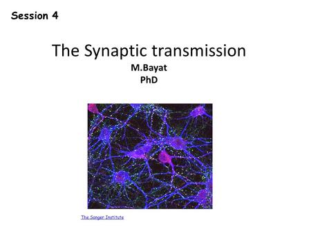 The Synaptic transmission M.Bayat PhD The Sanger Institute Session 4.