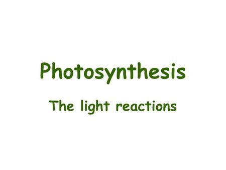 Photosynthesis The light reactions. Photosynthesis One of the most important biochemical process in plants. –Let's not forget cell wall biosynthesis and.