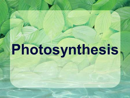 Photosynthesis Introduction 6 CO 2 + 6 H 2 O + light energy → C 6 H 12 O 6 + 6 O 2 Photosynthesis consists of two independent pathways called the light-
