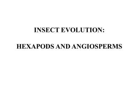 HEXAPODS AND ANGIOSPERMS