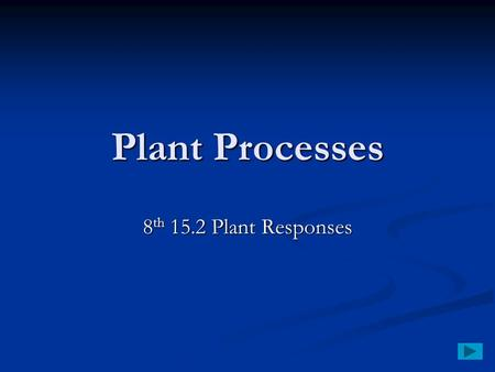 Plant Processes 8 th 15.2 Plant Responses. Plant Responses Tropism – response of a plant to an outside stimulus Tropism – response of a plant to an outside.