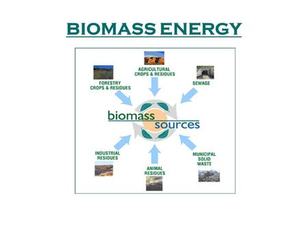 BIOMASS ENERGY. Biomass is organic material which has stored sunlight in the form of chemical energy. Biomass fuels include wood, wood waste, straw, manure,