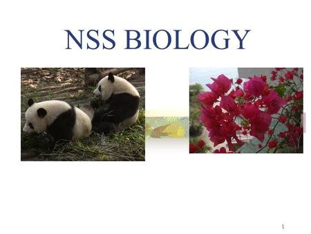 NSS BIOLOGY 1. Emphases 1. Scientific Inquiry 2. STSE Connections 3. Nature & History of Biology 3.