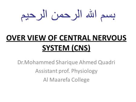 OVER VIEW OF CENTRAL NERVOUS SYSTEM (CNS) Dr.Mohammed Sharique Ahmed Quadri Assistant prof. Physiology Al Maarefa College.