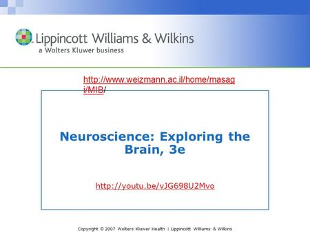 Copyright © 2007 Wolters Kluwer Health | Lippincott Williams & Wilkins Neuroscience: Exploring the Brain, 3e