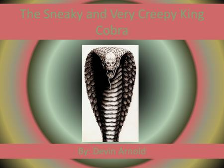 The Sneaky and Very Creepy King Cobra By: Devin Arnold.