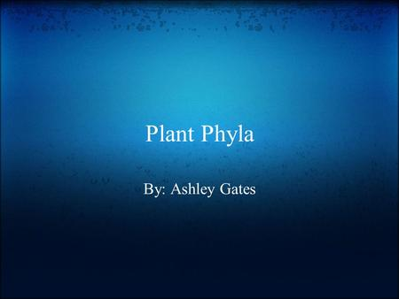Plant Phyla By: Ashley Gates.