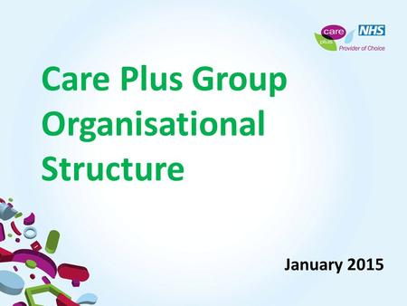 Care Plus Group Organisational Structure January 2015.