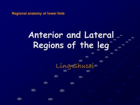 Anterior and Lateral Regions of the leg Ling Shucai Regional anatomy of lower limb.