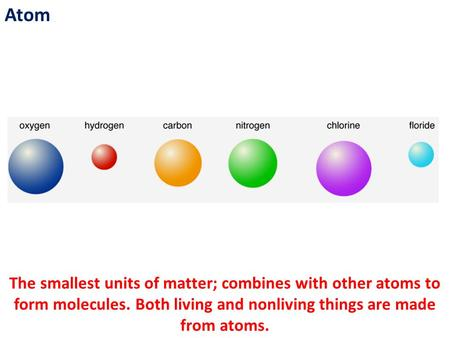 Atom The smallest units of matter; combines with other atoms to form molecules. Both living and nonliving things are made from atoms.