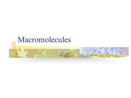 Macromolecules. Objectives List the elements that make up living things. List the four kinds of macromolecules. Describe carbohydrates, lipids, fats and.