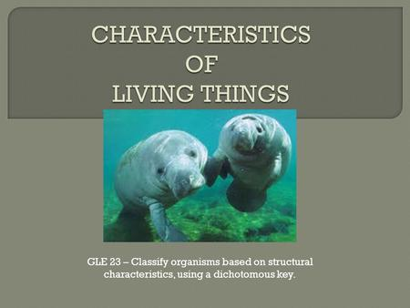 GLE 23 – Classify organisms based on structural characteristics, using a dichotomous key.