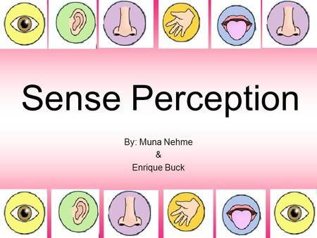 Sense Perception By: Muna Nehme & Enrique Buck. Traditional Senses 5 senses: - Touch - Sight - Smell - Taste - Hearing.