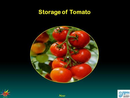 Next Storage of Tomato. Next End Previous Storage of Tomato Introduction Storage in case of tomato refers to keeping tomato fruits in safe condition for.