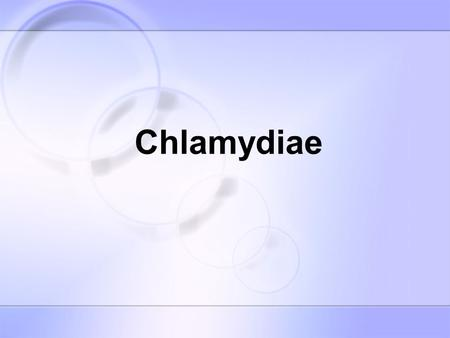 Chlamydiae. Chlamydiae are small gram-negative bacteria which obligate intracellular parasites and multiply in the cytoplasm of their host cell by a distinctive.