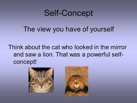 Self-Concept The view you have of yourself Think about the cat who looked in the mirror and saw a lion. That was a powerful self- concept!