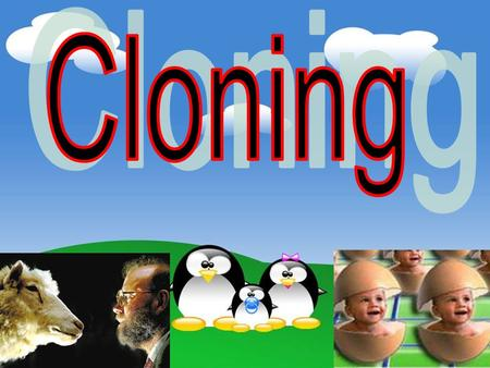 "Clone? Natural clone Man-made clone Natural clone is one that occurs from the ""parent "" in a natural form of cloning without human help. Man-made clone."