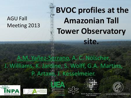 BVOC profiles at the Amazonian Tall Tower Observatory site.