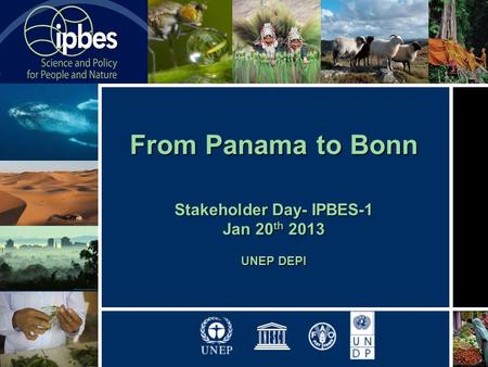 From Panama to Bonn Stakeholder Day- IPBES-1 Jan 20 th 2013 UNEP DEPI.