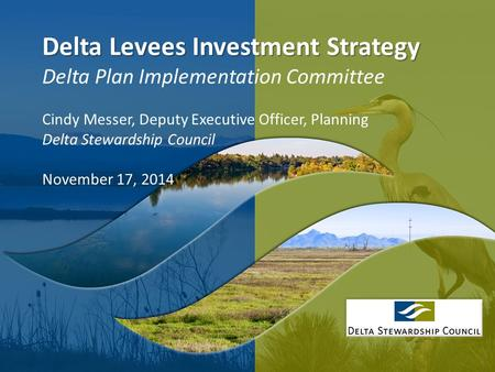 1 Delta Levees Investment Strategy Delta Levees Investment Strategy Delta Plan Implementation Committee Cindy Messer, Deputy Executive Officer, Planning.