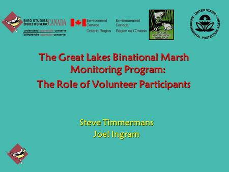The Great Lakes Binational Marsh Monitoring Program: The Role of Volunteer Participants Steve Timmermans Joel Ingram.