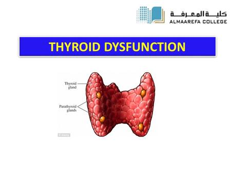 THYROID DYSFUNCTION.