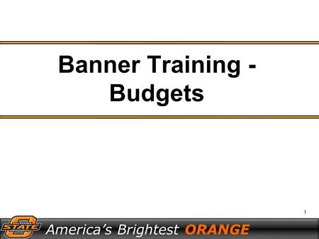 1 America's Brightest ORANGE Banner Training - Budgets.