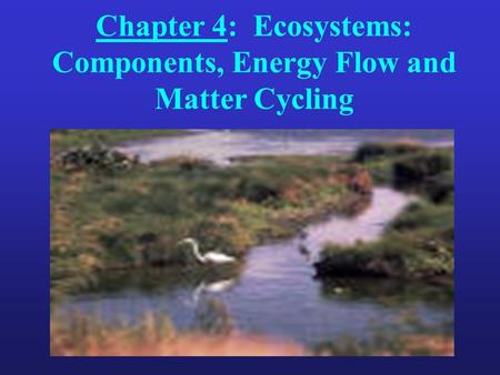Chapter 4: Ecosystems: Components, Energy Flow and Matter Cycling.