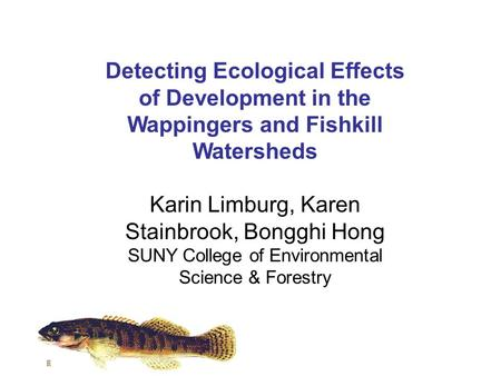 Detecting Ecological Effects of Development in the Wappingers and Fishkill Watersheds Karin Limburg, Karen Stainbrook, Bongghi Hong SUNY College of Environmental.