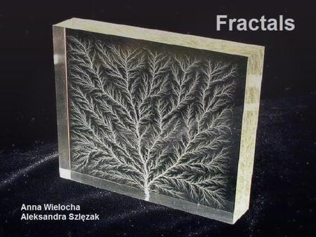  Introduction  Definition of a fractal  Special fractals: * The Mandelbrot set * The Koch snowflake * Sierpiński triangle  Fractals in nature  Conclusion.