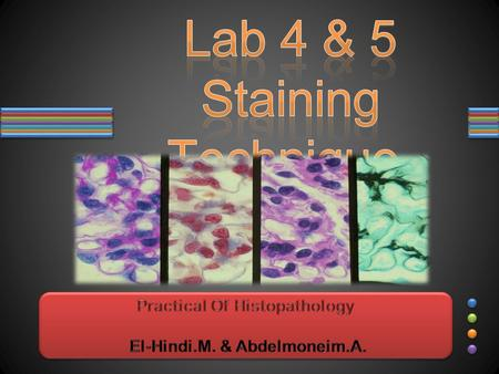 Objectives: classification of Stains 1. Understand the classification of Stains. basic tissue staining methods 2. Understand basic tissue staining methods.