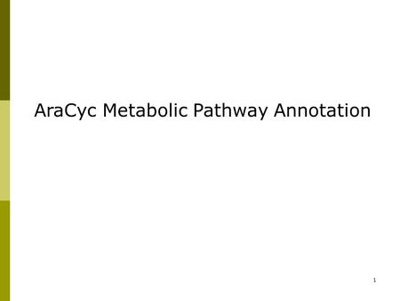 1 AraCyc Metabolic Pathway Annotation. 2 AraCyc – An overview  AraCyc is a metabolic pathway database for Arabidopsis thaliana;  Computational prediction.