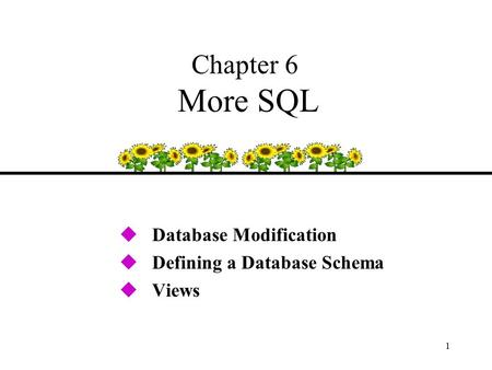 1 Chapter 6 More SQL uDatabase Modification uDefining a Database Schema uViews.