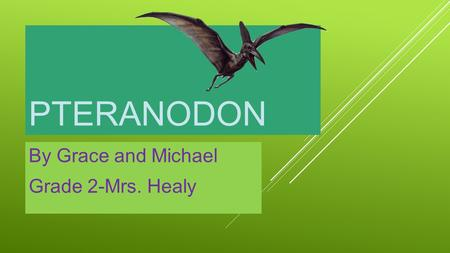PTERANODON By Grace and Michael Grade 2-Mrs. Healy.
