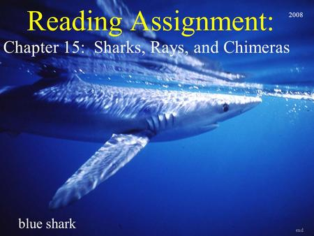 Reading Assignment: Chapter 15: Sharks, Rays, and Chimeras end blue shark 2008.