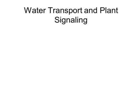 Water Transport and Plant Signaling