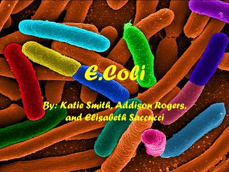 E.Coli By: Katie Smith, Addison Rogers, and Elisabeth Saccucci.