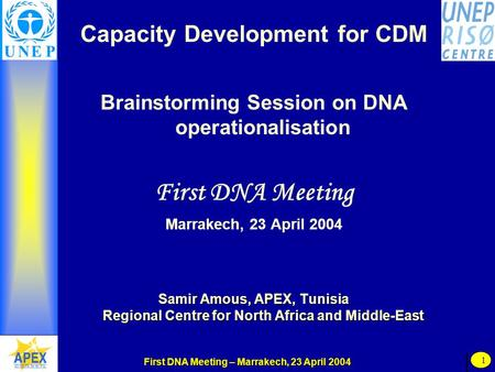 First DNA Meeting – Marrakech, 23 April 2004 1 Capacity Development for CDM Brainstorming Session on DNA operationalisation First DNA Meeting Marrakech,