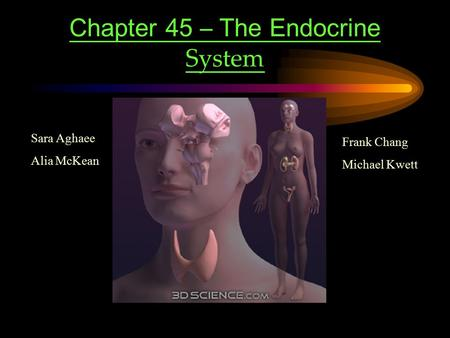 Chapter 45 – The Endocrine System Sara Aghaee Alia McKean Frank Chang Michael Kwett.