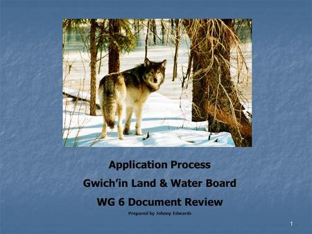 1 Application Process Gwich'in Land & Water Board WG 6 Document Review Prepared by Johnny Edwards.